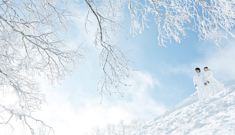 <p>この時期ならではの3つの魅力<br /> その2 雪のロケーションフォト</p> 1