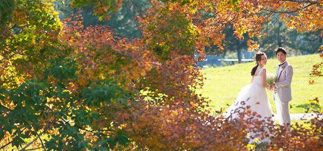 大自然を前に神秘的な教会で誓う 心地良い秋風そよぐステイウエディング